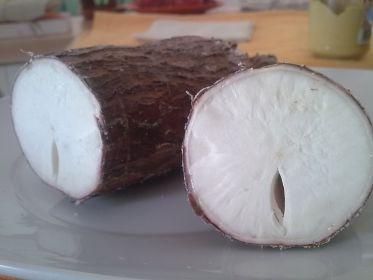 manioca-polpa