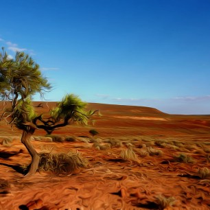 Outback serie 4