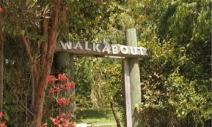Walkabout 2