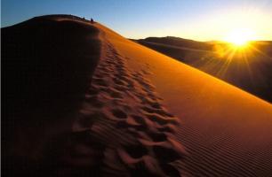 8_deserto Resize